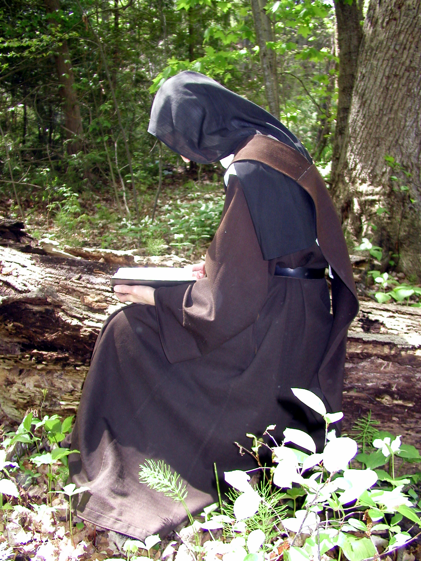 nun-in-woods.jpg